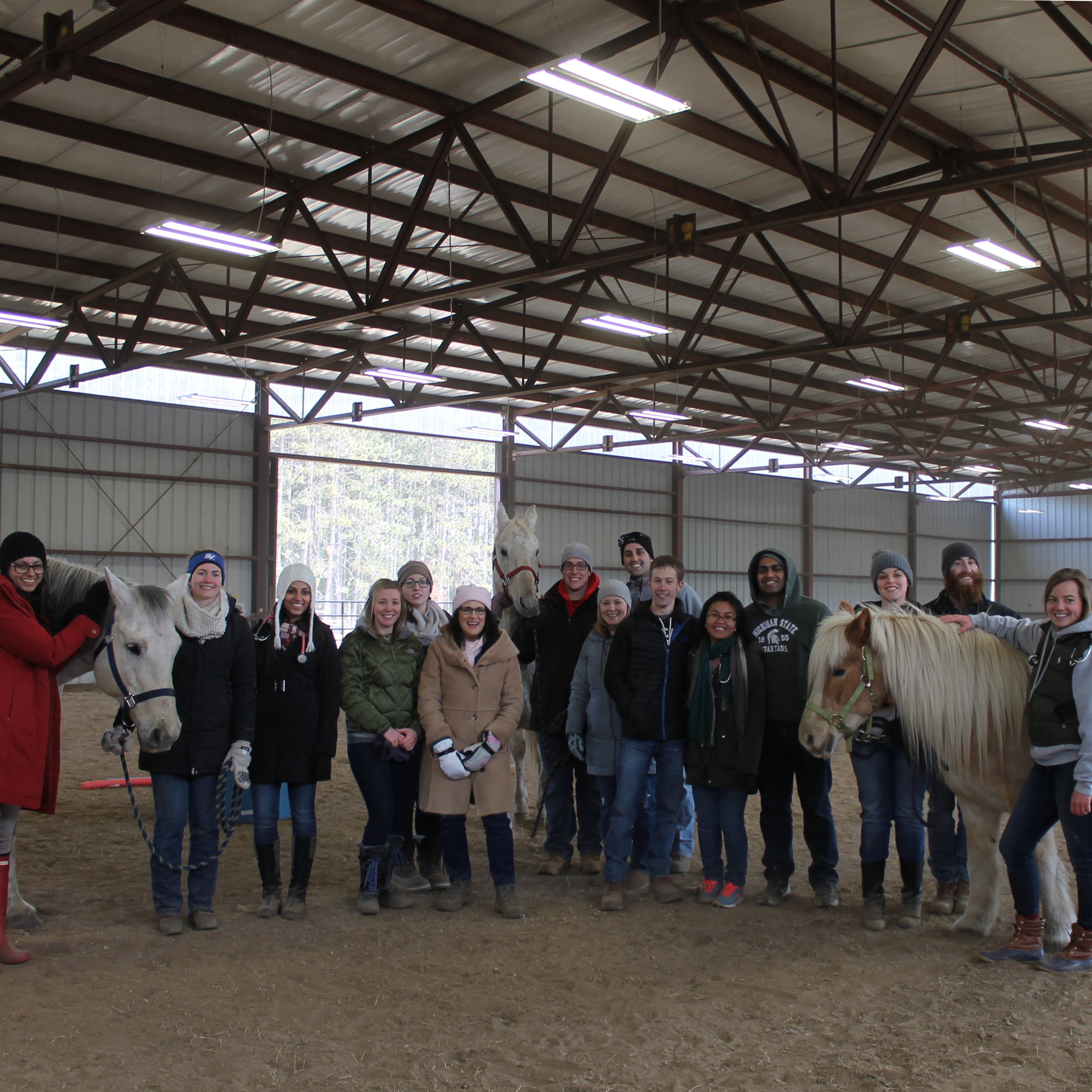Mid-Central Region Hosts Equine Assisted Therapy Workshop for CMU Medical Students