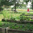 St. Andrew\'s Gardeners Celebrate Season\'s First Potluck