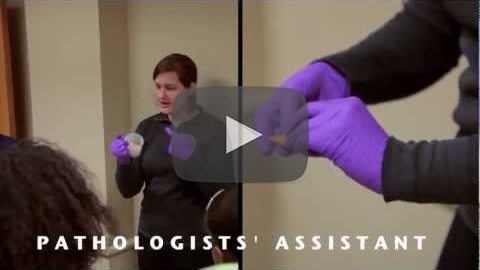 Wayne State Pathologists' Assistant Program