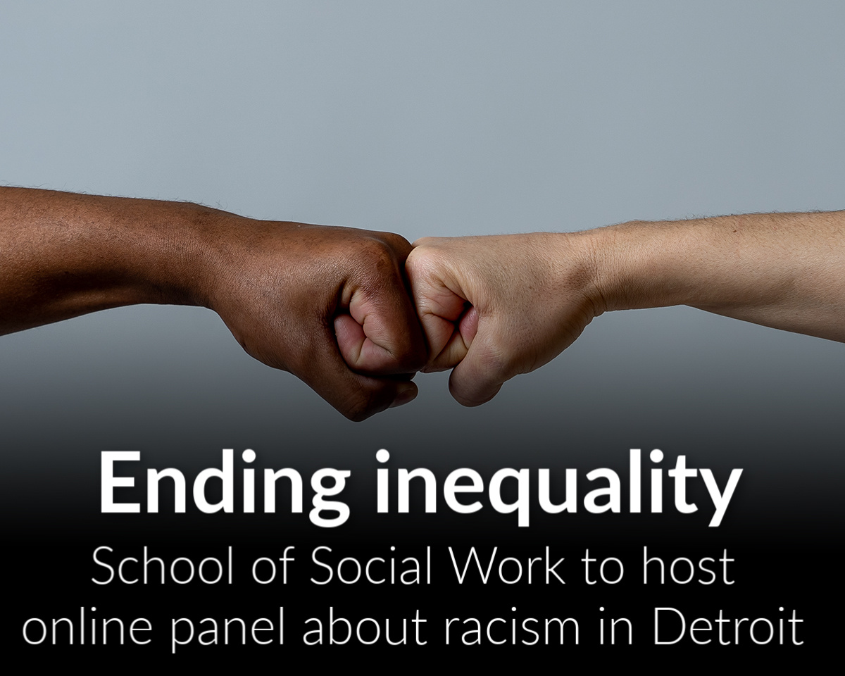 Community Action in Time of Crisis: The Impact of Racial Inequality in Detroit