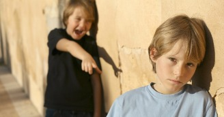 Professor's View of the Bullying Phenomenon Through Research
