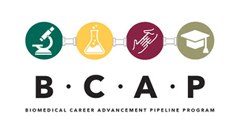 BCAP Program Switches to Online Format