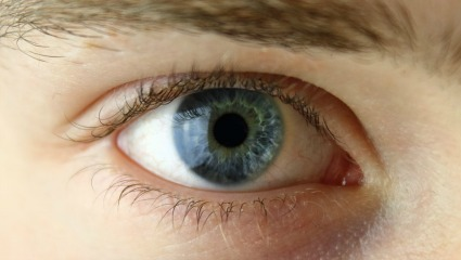 Wayne State receives $1.9M NIH grant to develop novel therapy for corneal bacterial infection